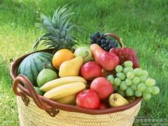 有机水果批发 新疆水果